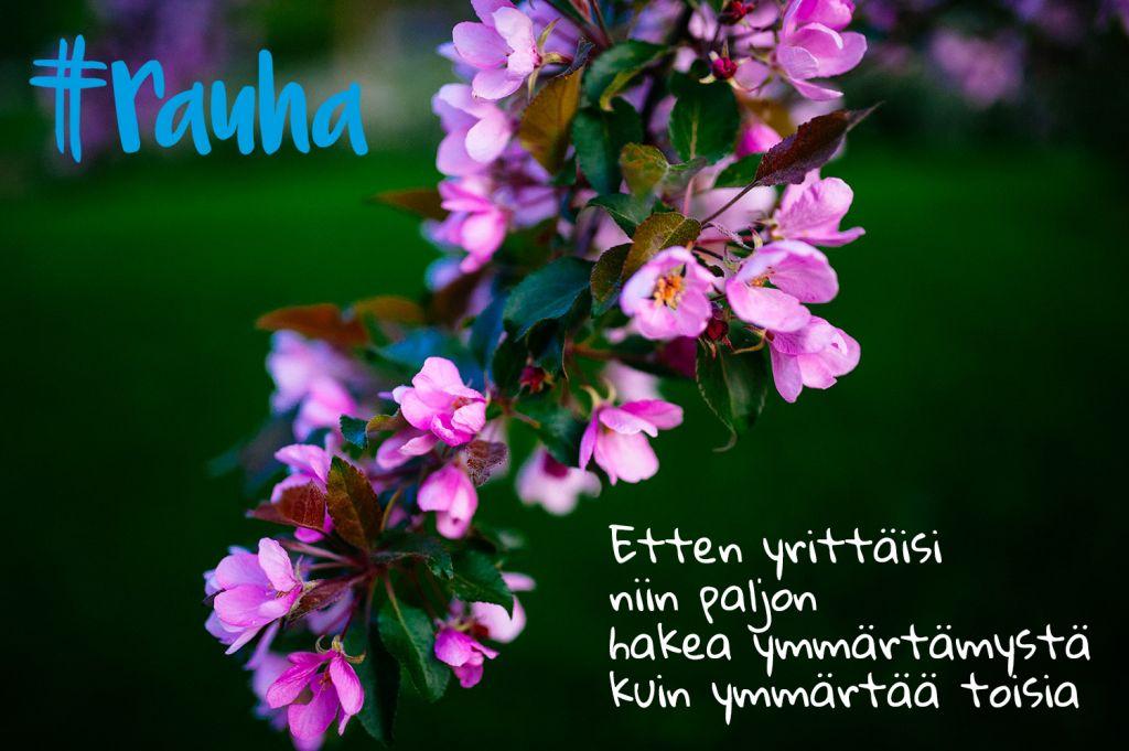 Rauhamaassa.fi